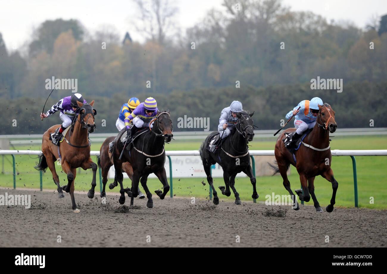 Horse Racing - Lingfield Park Racecourse - Stock Image