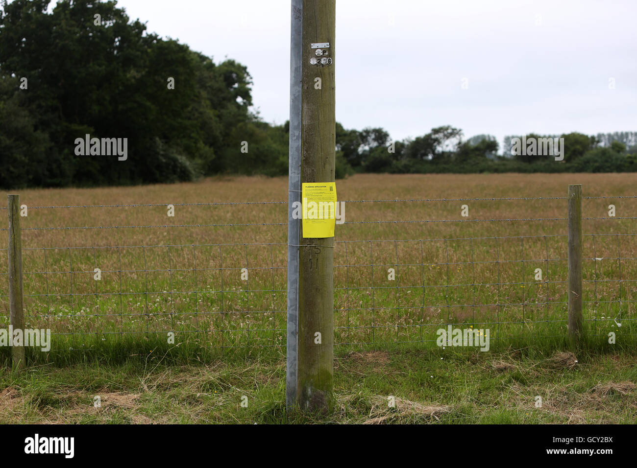 Yellow planning application poster stuck to a telegraph pole in Pagham, West Sussex, UK. Pagham is under threat - Stock Image