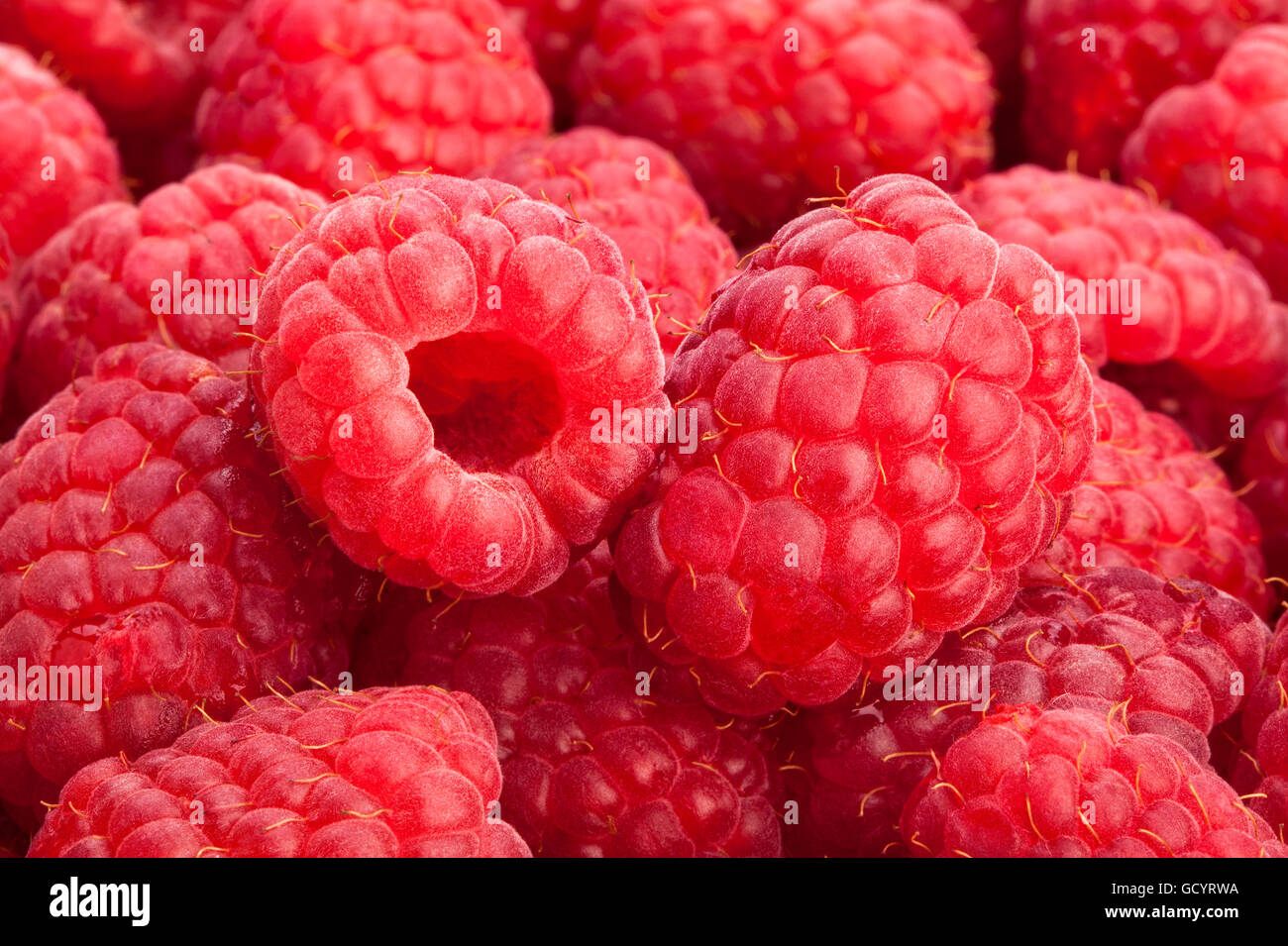 raspberry macro closeup - Stock Image