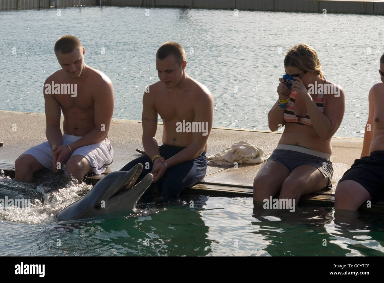 Sanctuary Bay, Grand Bahama. Bahamas. UNEXSO. Program Swim and close encounter with the dolphins. - Stock Image