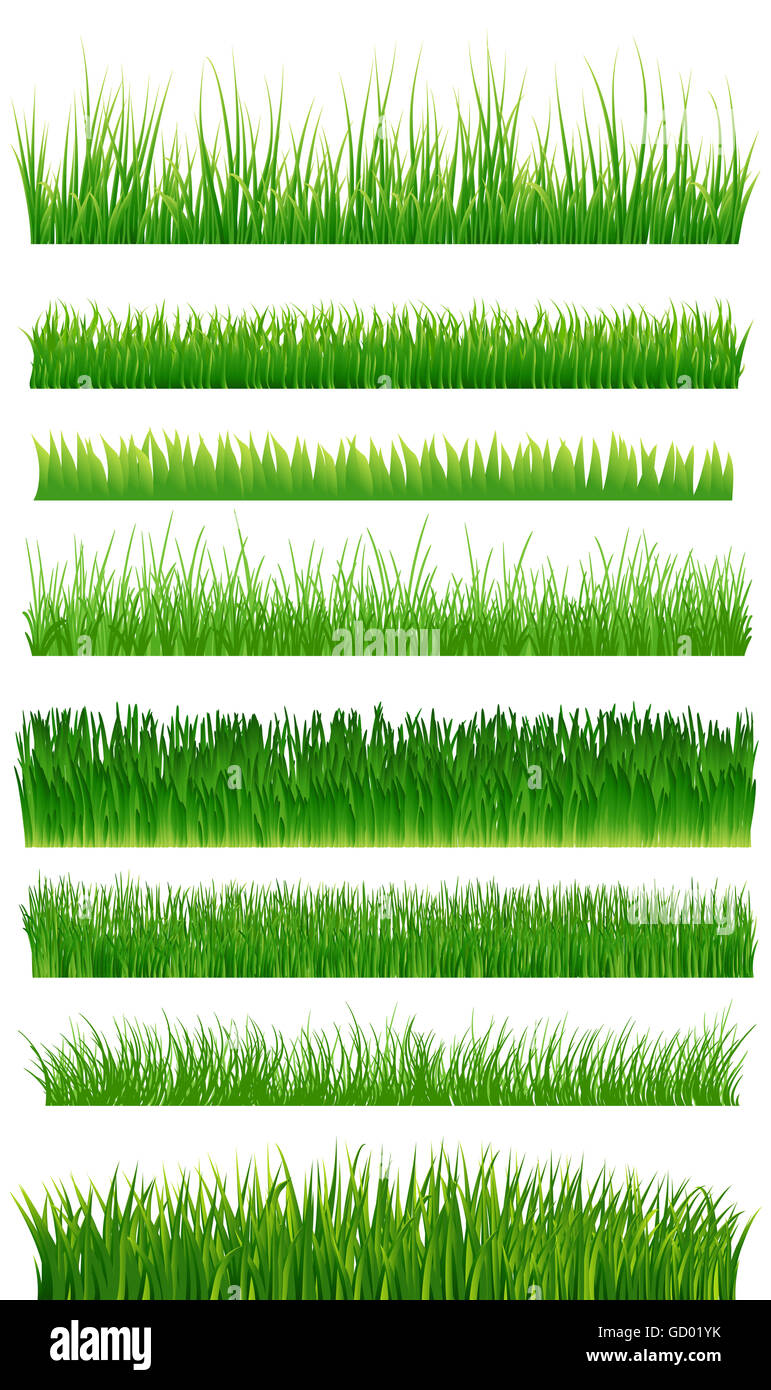Green grass borders collection over white. illustration - Stock Image