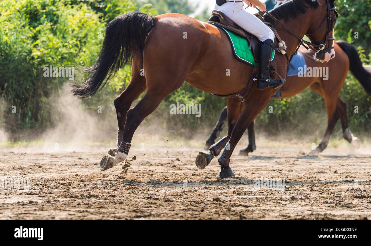 Young girl riding a horse - Stock Image