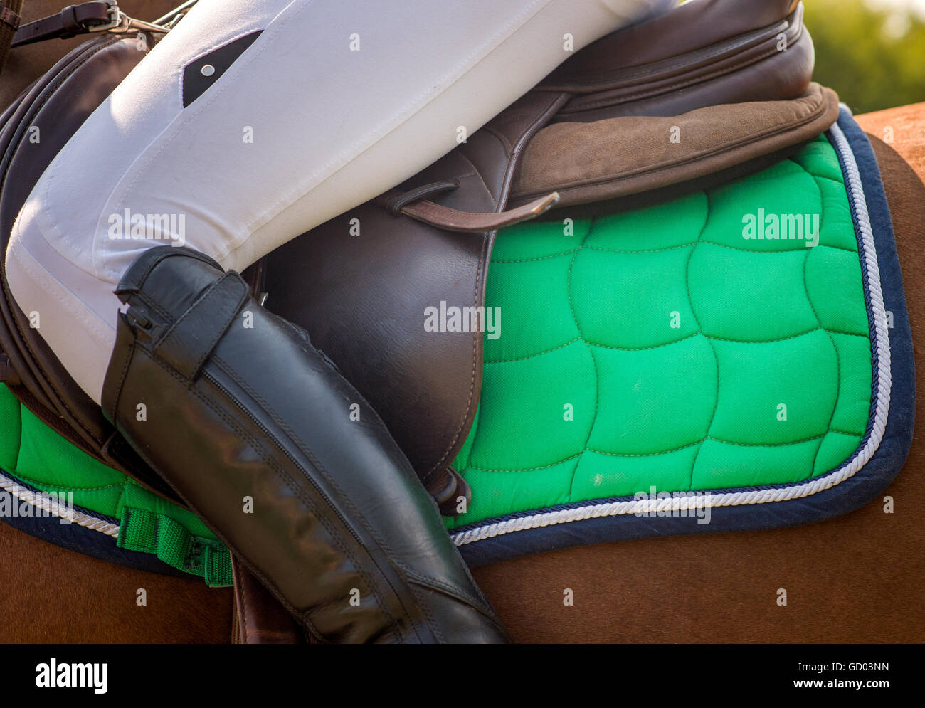 Dressage horse and rider girl - Stock Image