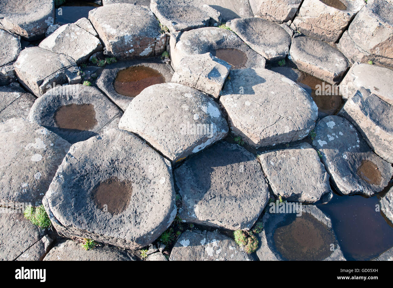 Giants Causeway. Unique geological hexagonal formations of volcanic basalt rocks on the coast in Northern Ireland, - Stock Image