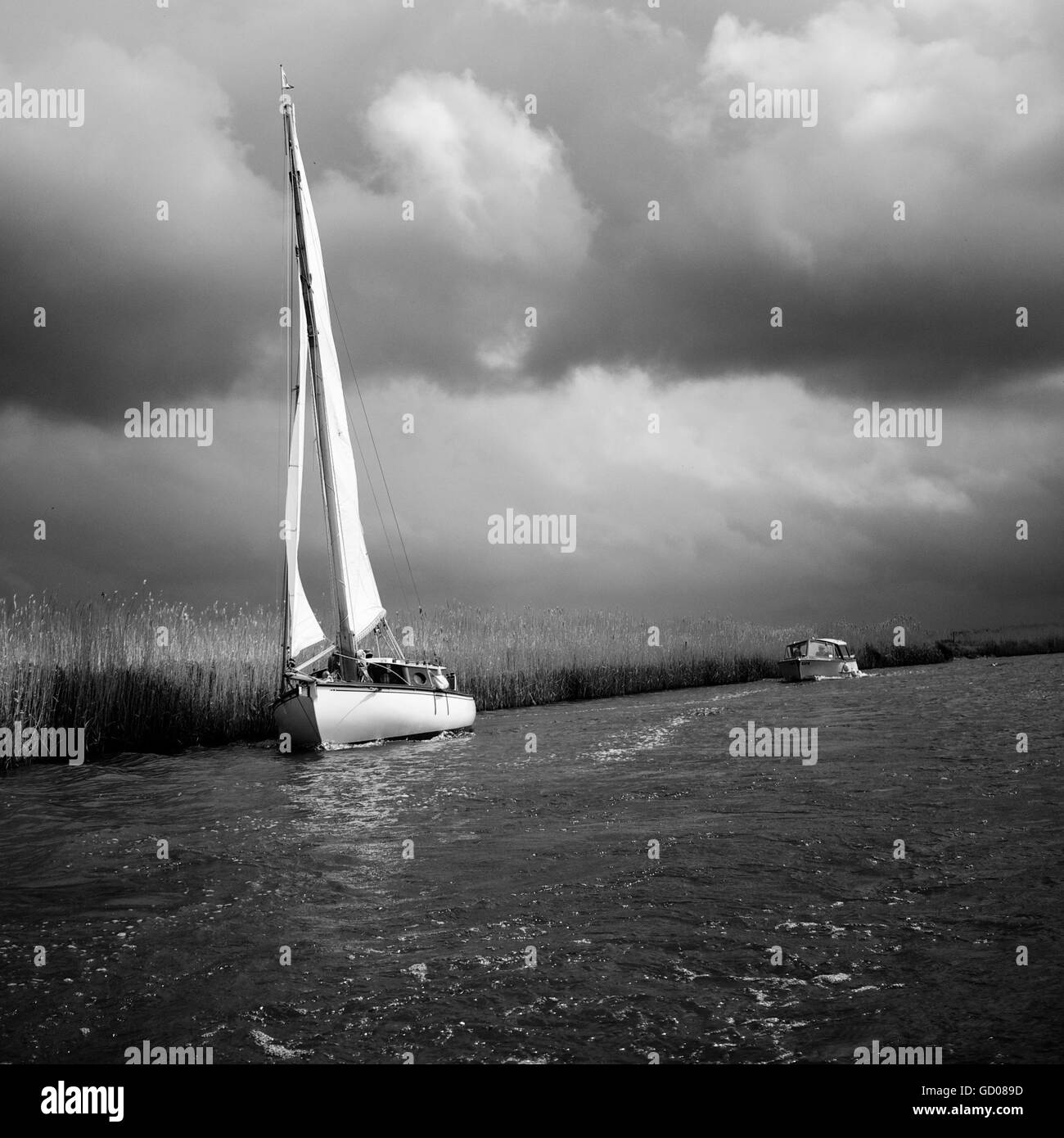 Sailing boat on the Norfolk Broads - Stock Image