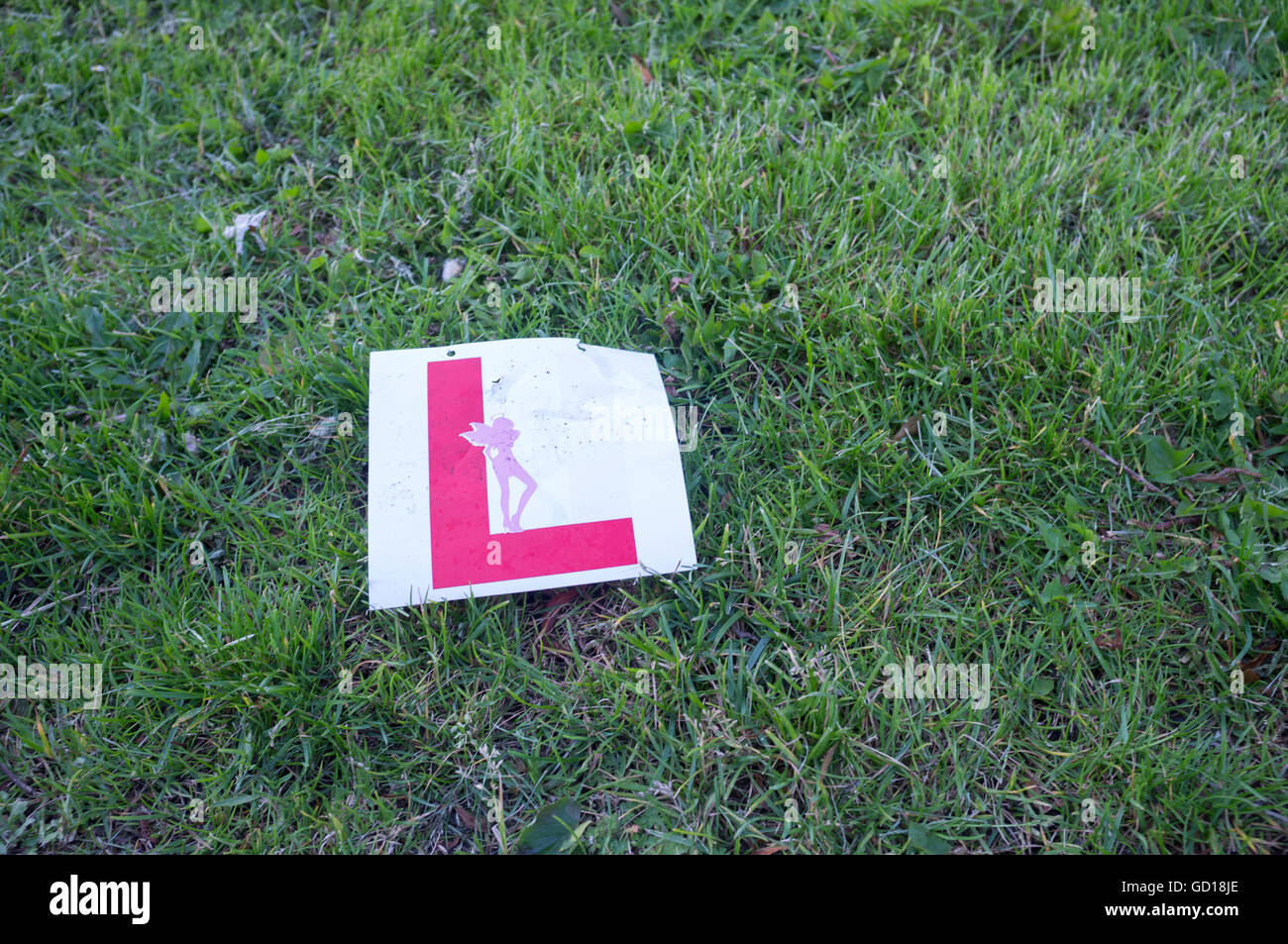 L plate for hen do - Stock Image
