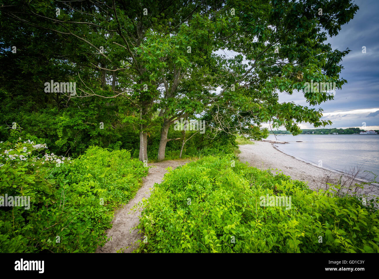 Narrow trail and coast at  Odiorne Point State Park, in Rye, New Hampshire. - Stock Image