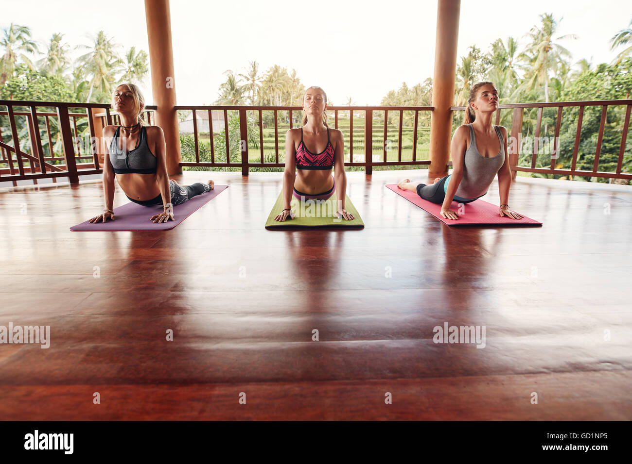Group of people doing yoga. Practicing cobra pose at yoga class. Wellness and healthy lifestyle. - Stock Image