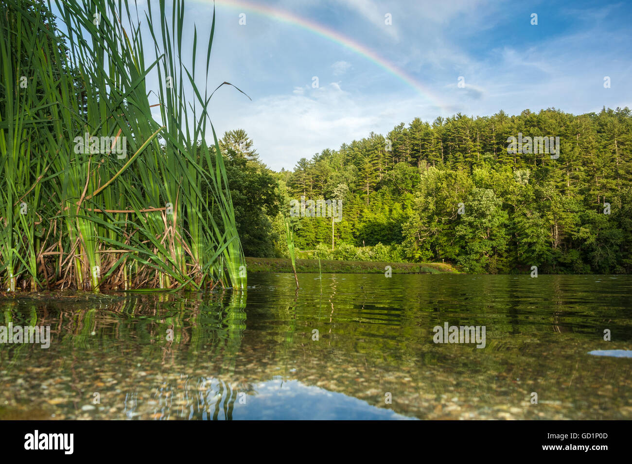 Beautiful rainbow over Lake Trahlyta at Vogel State Park in the Blue Ridge Mountains of North Georgia, USA. - Stock Image