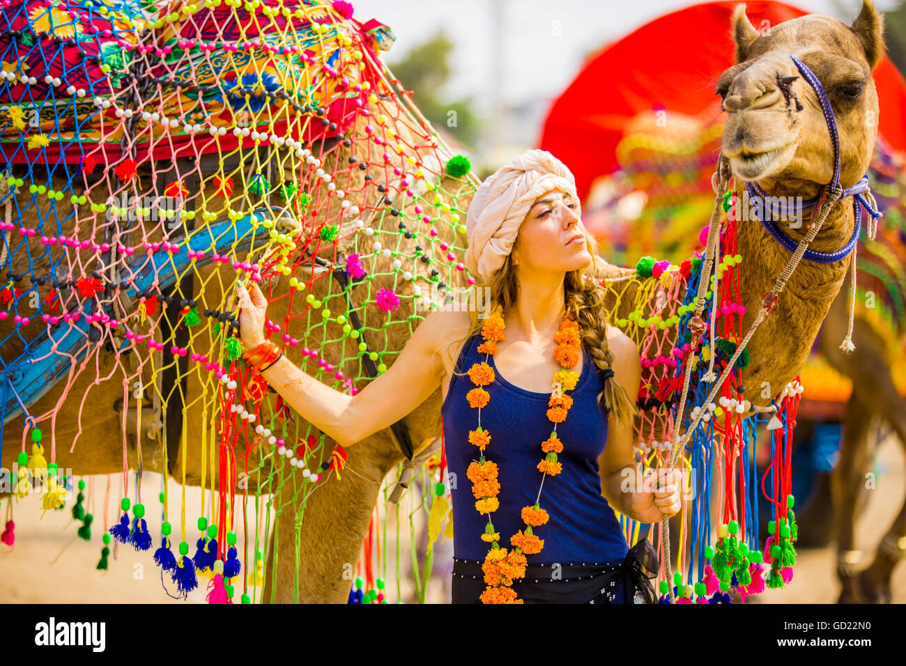 Laura Grier with camel at the Pushkar Camel Fair, Pushkar, Rajasthan, India, Asia - Stock Image
