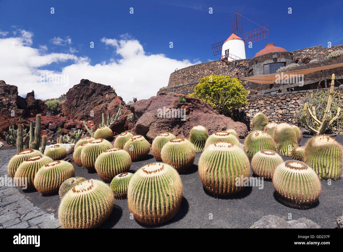 Cactus Garden Jardin De Cactus By Cesar Manrique Wind Mill Unesco