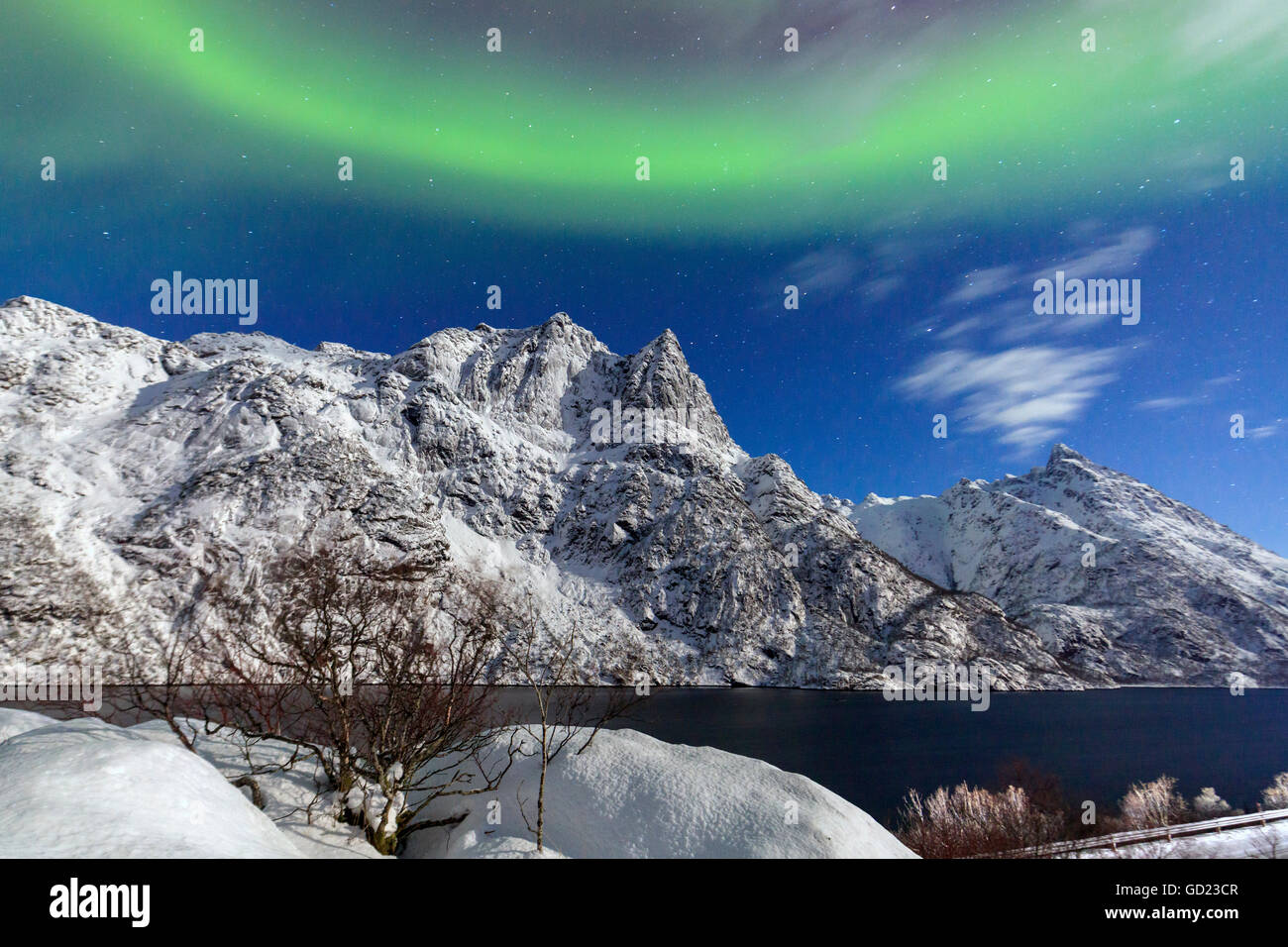 Northern Lights illuminate the snowy peaks and the blue sky during a starry night, Budalen, Svolvaer, Lofoten Islands, - Stock Image