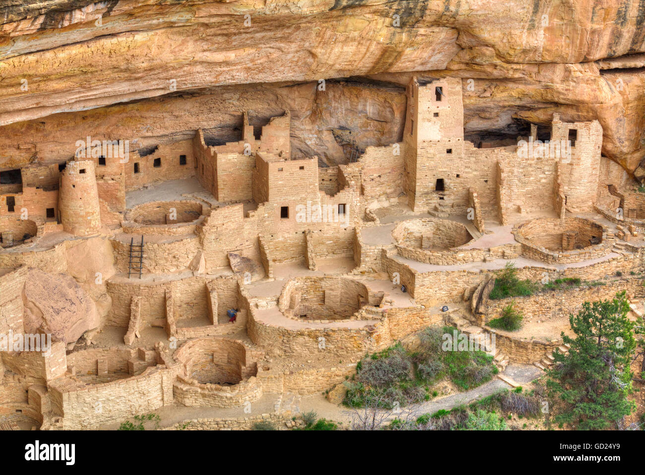 Anasazi Ruins, Cliff Palace, dating from between 600 AD and 1300 AD, Mesa Verde National Park, UNESCO, Colorado, - Stock Image
