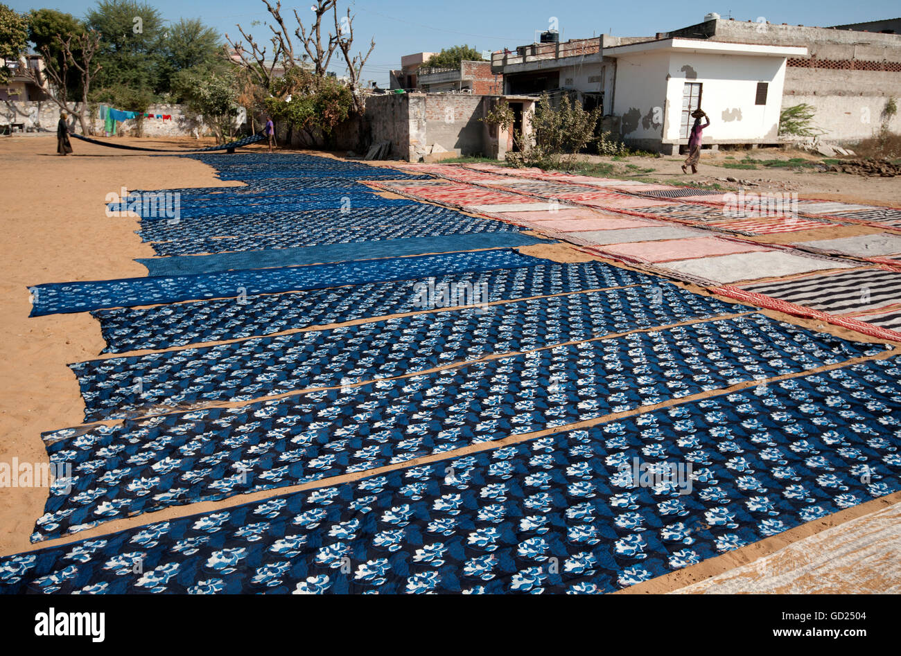 Newly Ajhrak (indigo) block printed lengths of fabric laid out in the sun to dry, Bagru, Jaipur, Rajasthan, India, - Stock Image