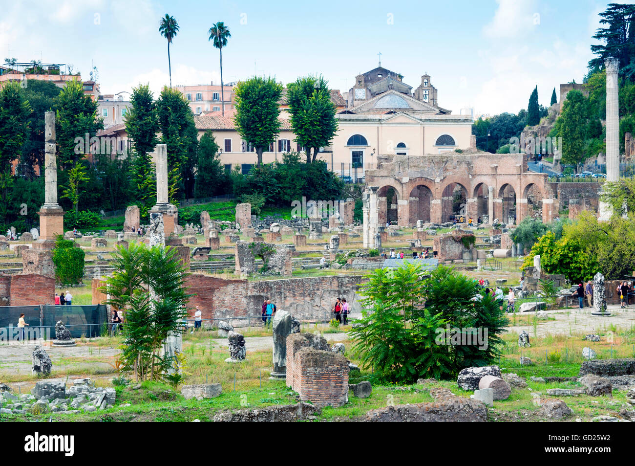 Forum of Nerva, Roman Forum (Foro Romano), UNESCO World Heritage Site, Rome, Lazio, Italy, Europe - Stock Image