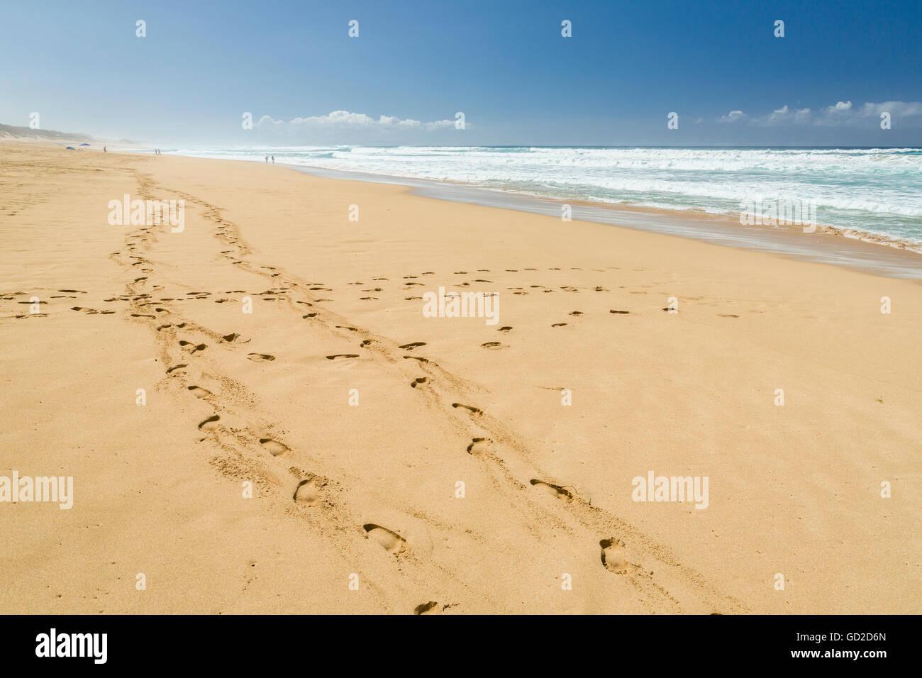 Footprints in the sand, Barking Sands (Polihale Beach) on West Kauai; Kauai, Hawaii, United States of America Stock Photo