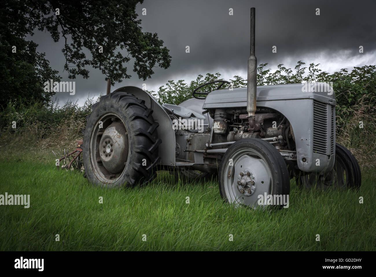 Vintage Ferguson Tractor - Stock Image
