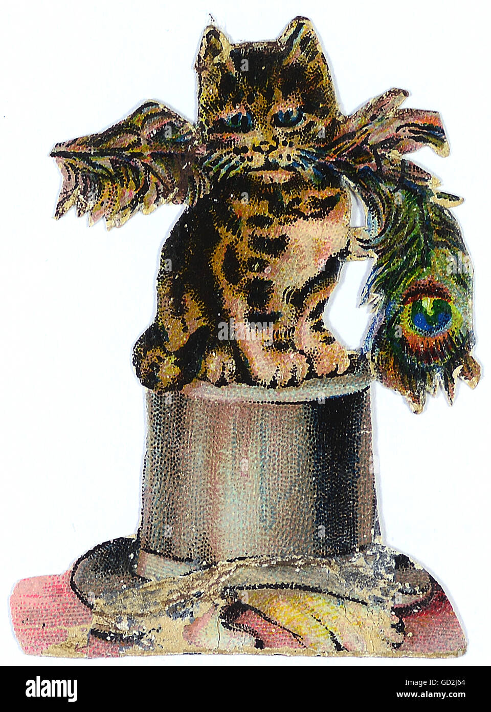 kitsch / souvenir, glossy prints, cat sitting on a hat, a peacock feather in the snout, chromolithograph, late 19th - Stock Image