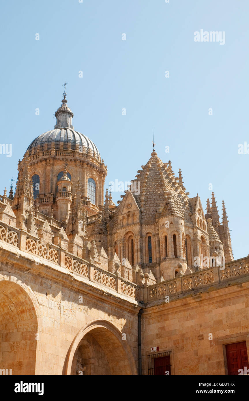 Cupolas of the cathedral. Salamanca, Spain. - Stock Image