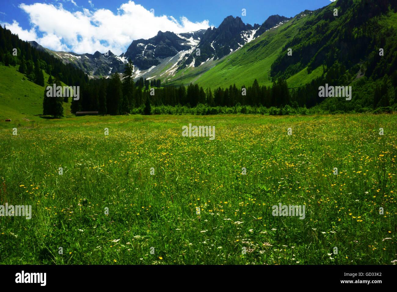 Alp Chilei Fildrich with Mt. Gsür, Diemtigtal BNature Park, Bernese alps, Switzerland - Stock Image