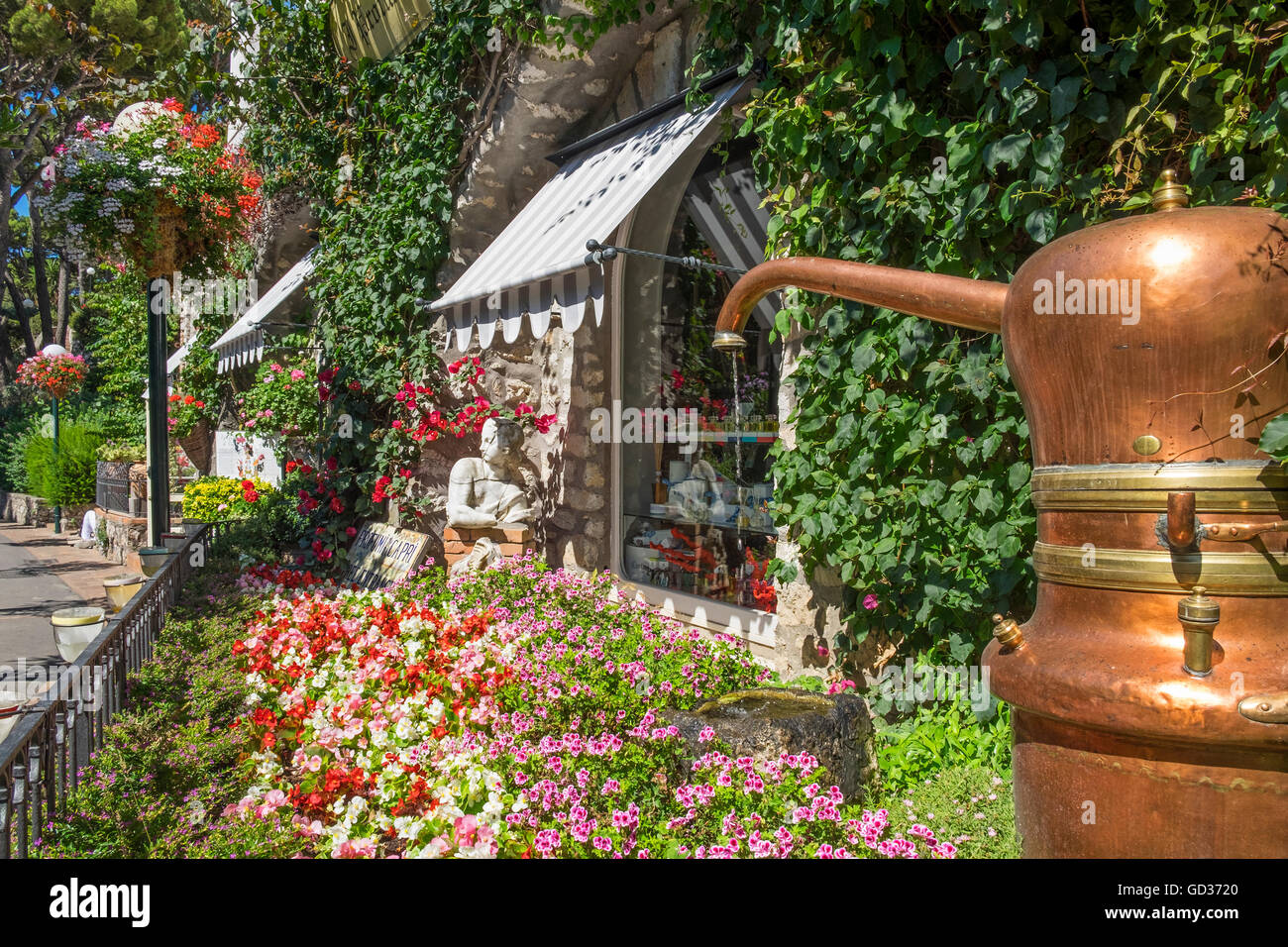 The garden at the entrance to the Carthusia perfume building on the island of Capri, Italy - Stock Image