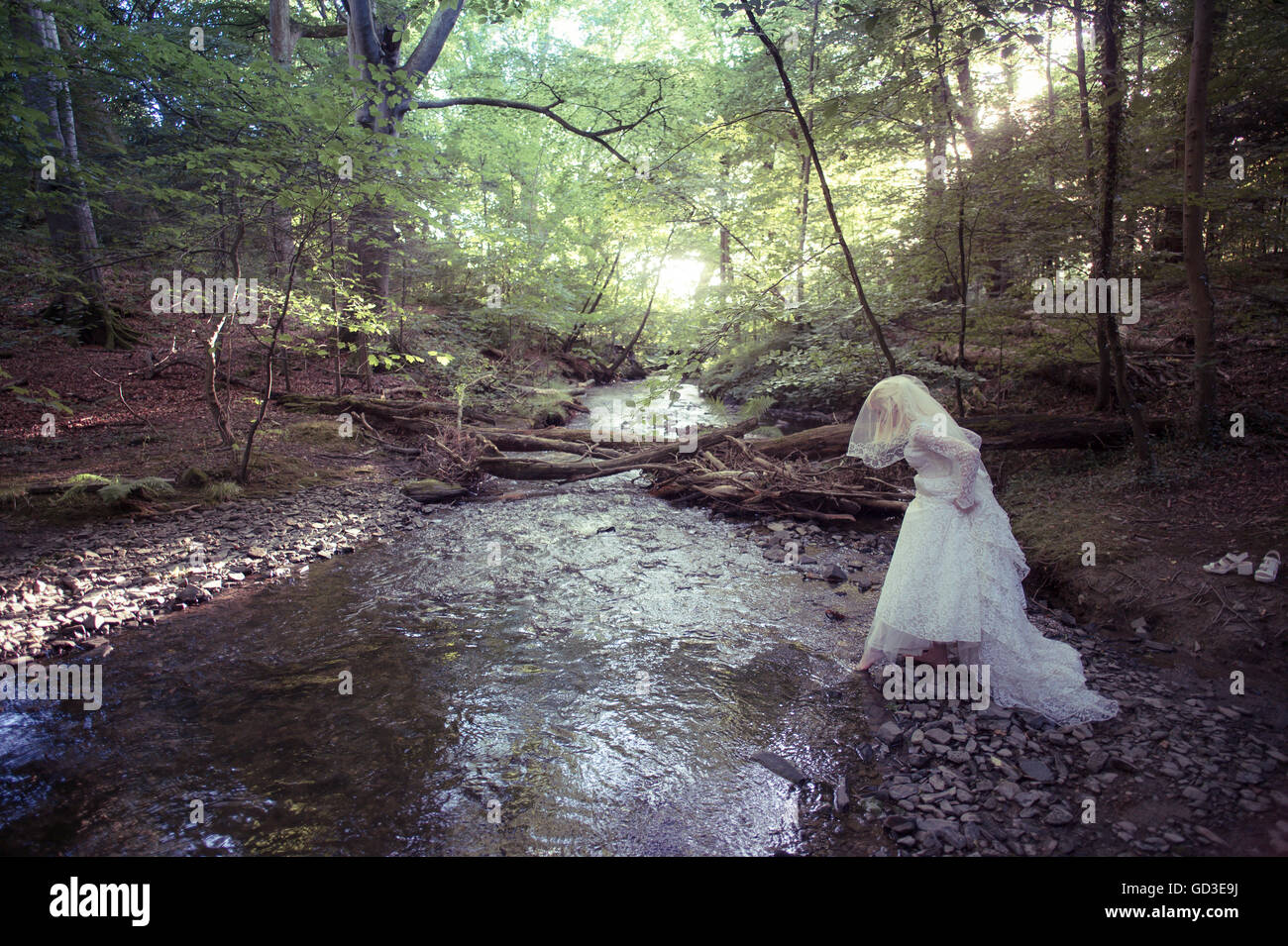 A young blonde woman girl wearing an old-fashioned white wedding dress frock walking alone  by a stream in a woodland Stock Photo