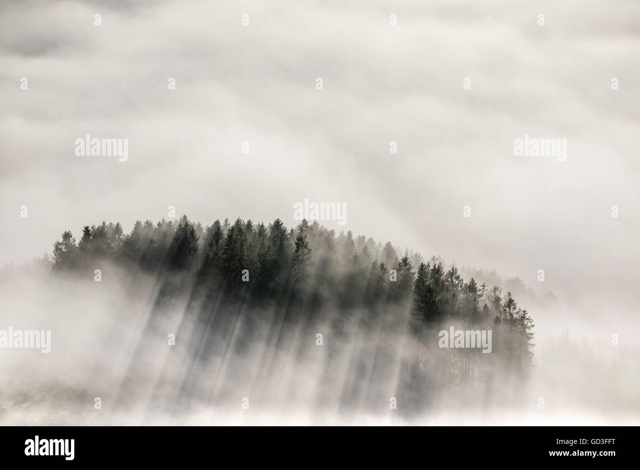 Aerial view, cloud cover in the valleys of Meschede, Meschede, Sauerland, North Rhine Westphalia, Germany, Europe, - Stock Image