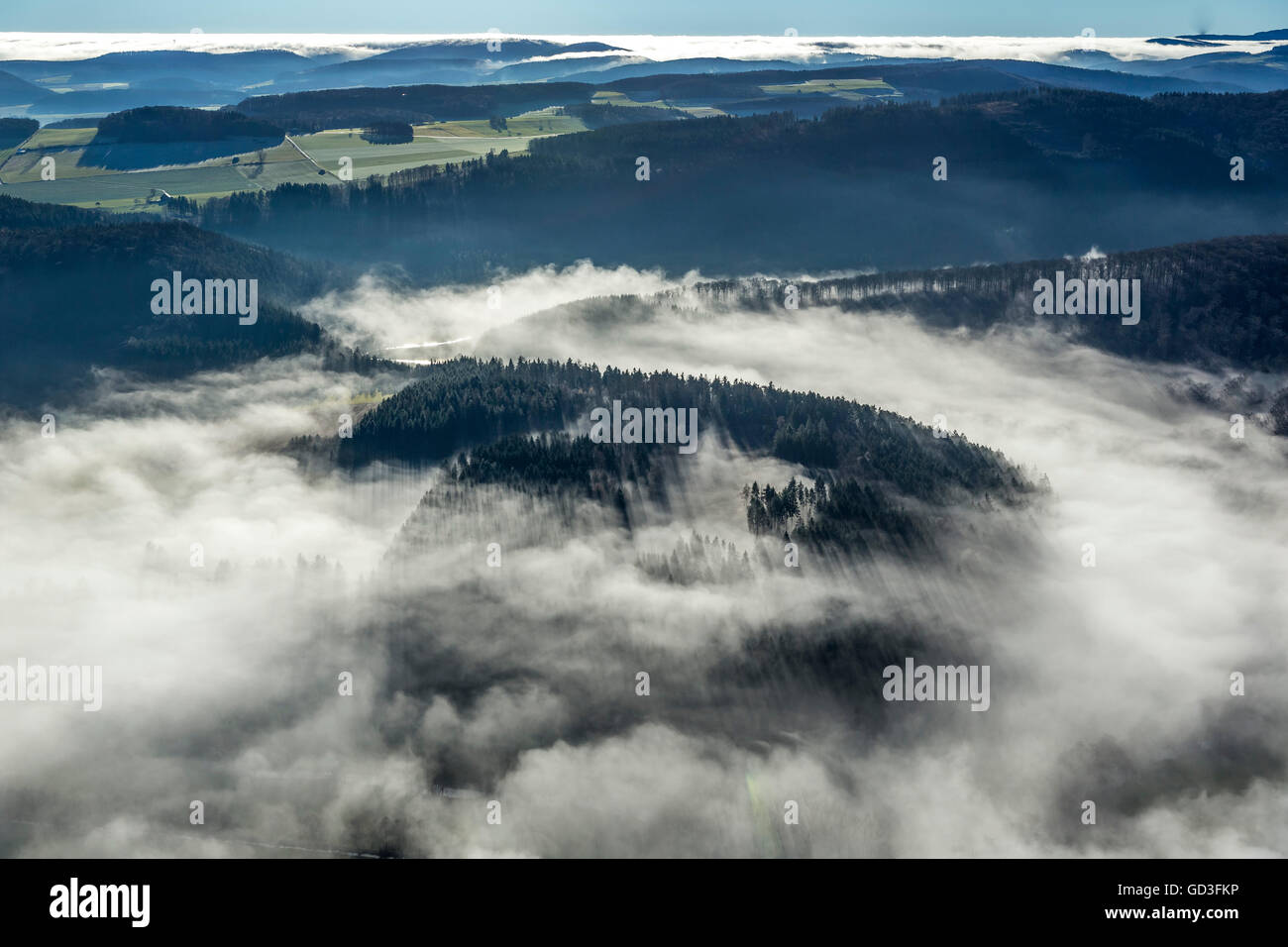 Aerial view, coniferous forest, mist over the Sauerland, Aerial view of Mars, Sauerland, North Rhine Westphalia, - Stock Image