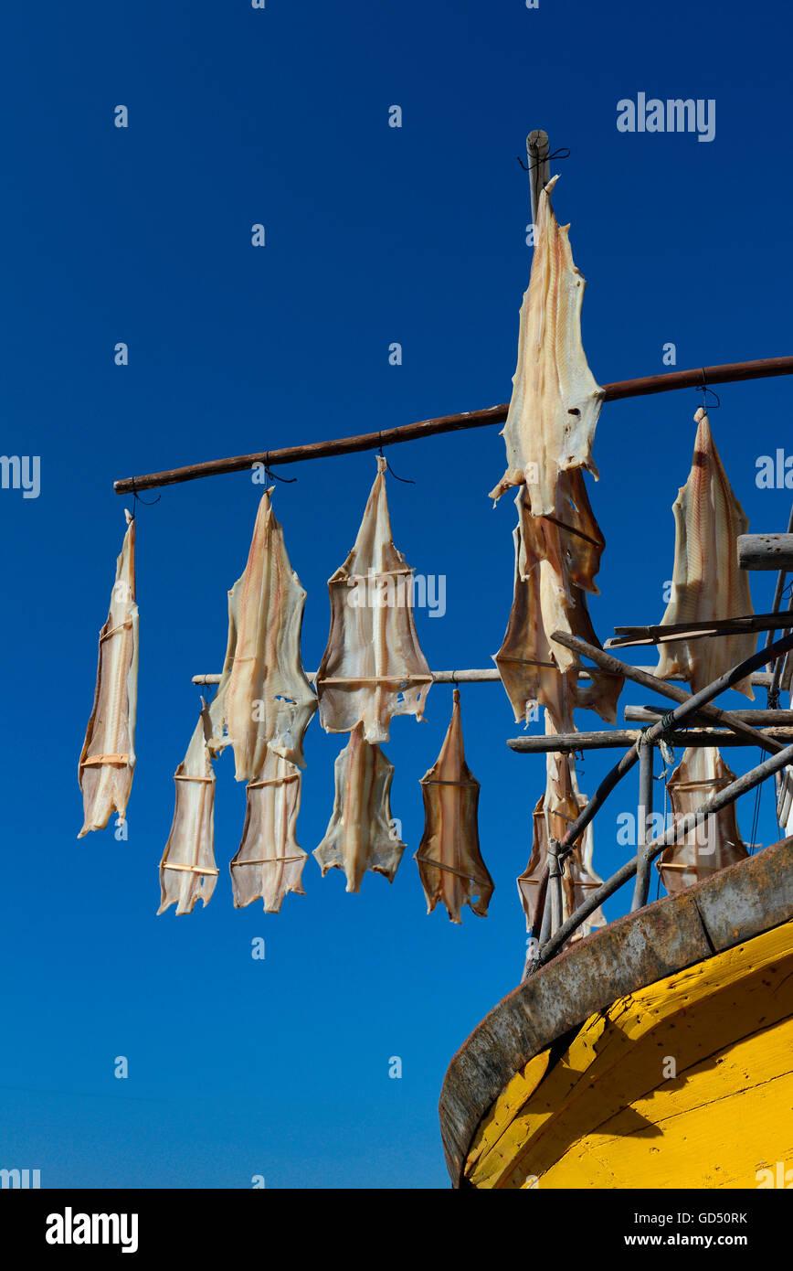 Fischerboot, Trocknen aufgehaengter Stockfisch, Madeira, Portugal, Europa Stock Photo