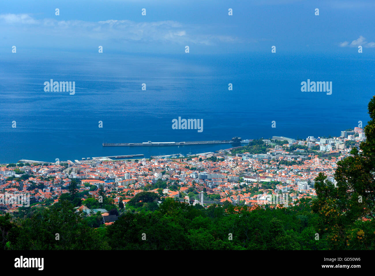 Funchal mit Hafen, Madeira, Portugal, Europa - Stock Image