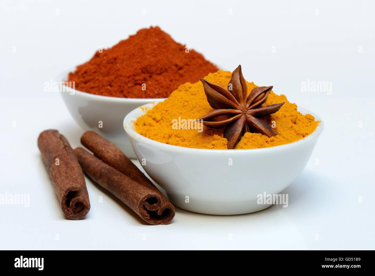 Spices in bowls, Cinnamomum spec., Capsicum annuum, Illicium verum, Curcuma longa - Stock Image