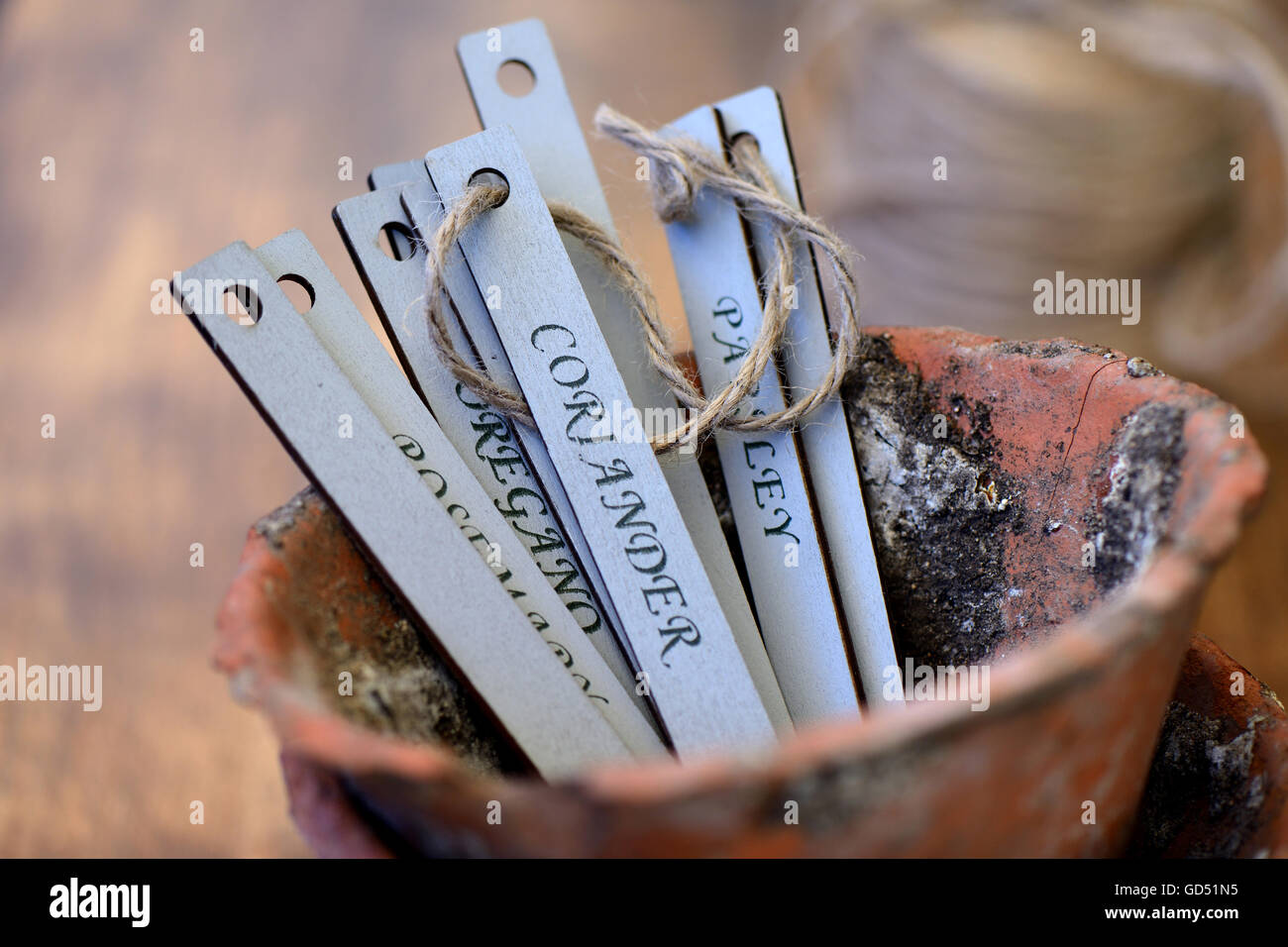 Name plates for herbs - Stock Image
