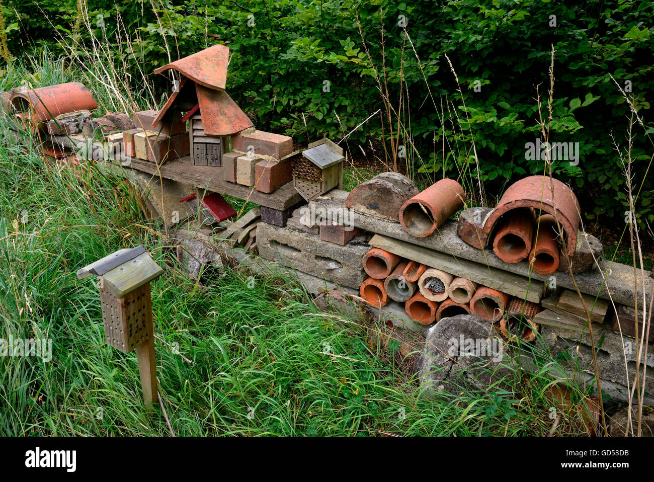Nesting aid for insects - Stock Image