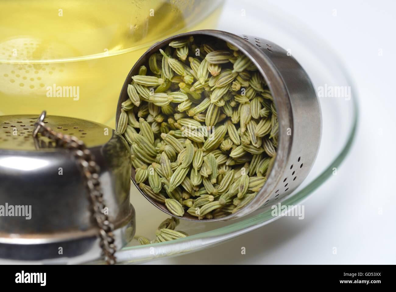 Fencheltee in Tasse und Fenchelsamen in Loeffel, Fenchel-Tee Stock Photo