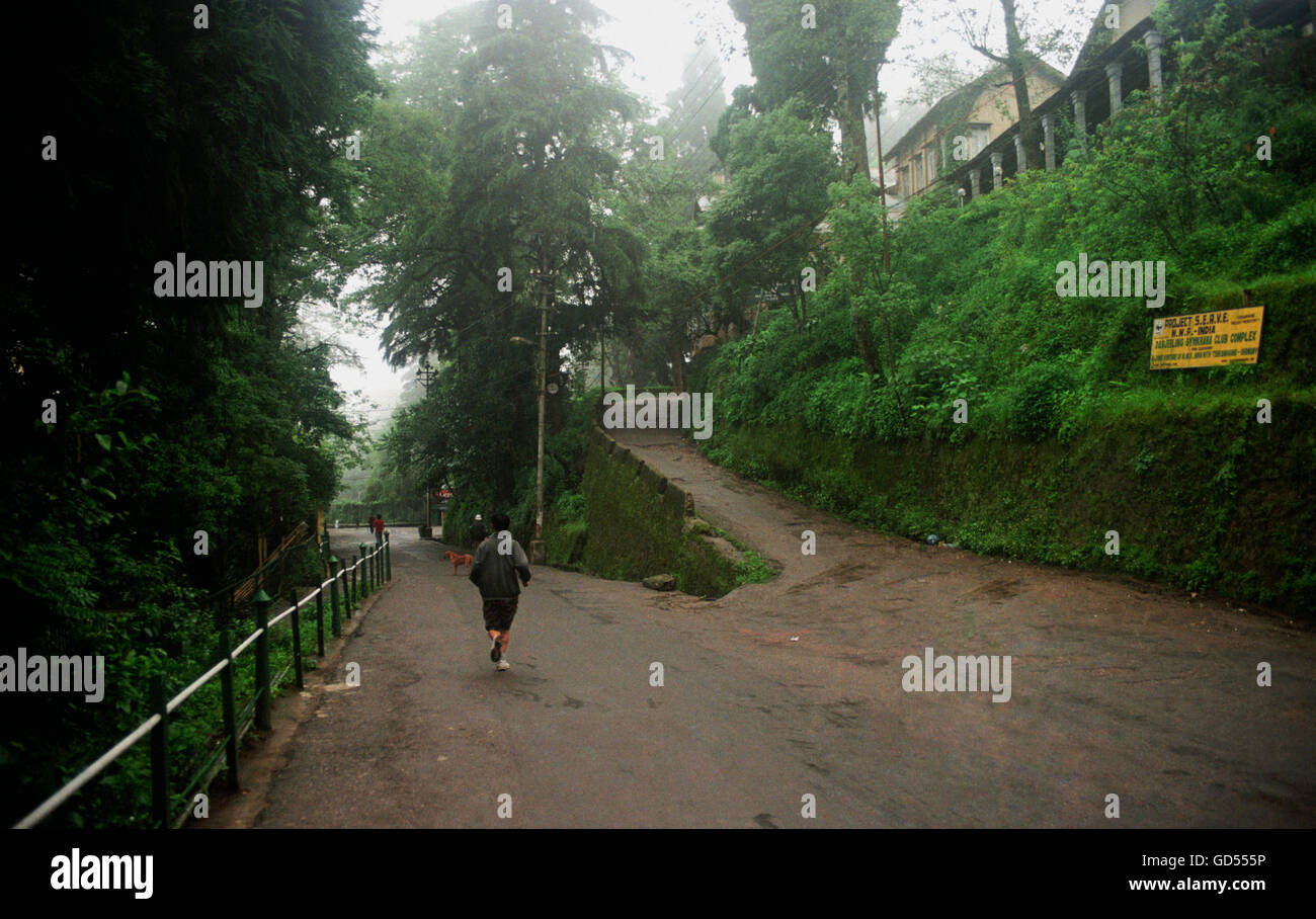Darjeeling Mall Road to the Observatory Hill - Stock Image