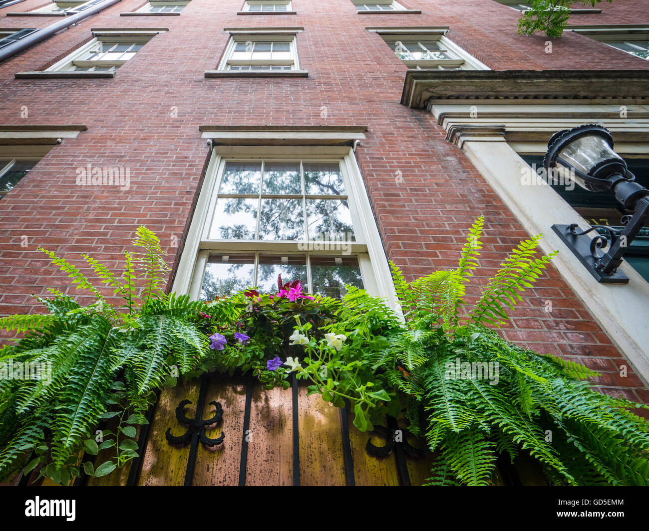 Flowers and ferns in a window box decorate an attractive brick building in residential Philadelphia - Stock Image