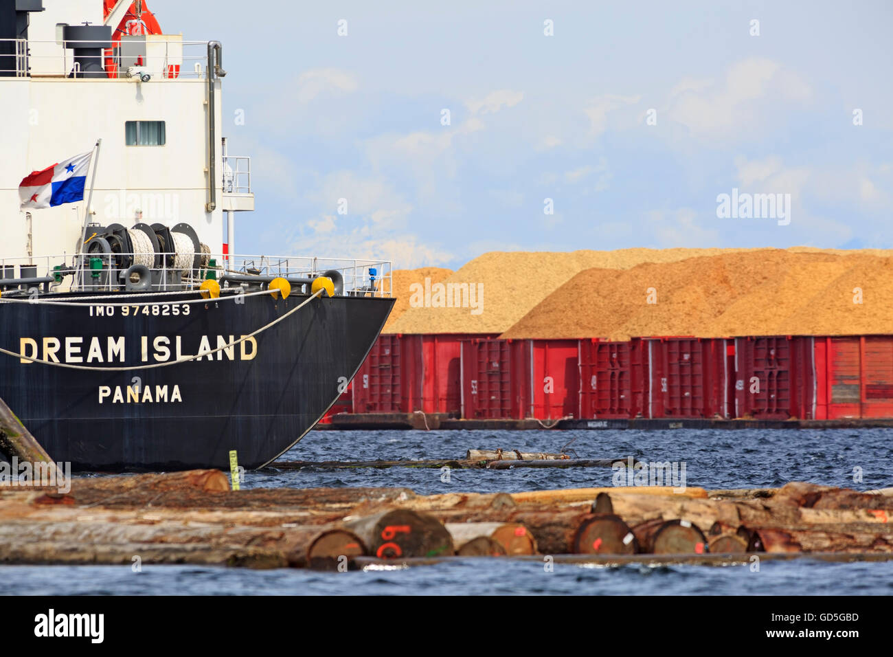 Ship and wood chip barges at pulp mill, Crofton, Vancouver Island, British Columbia - Stock Image