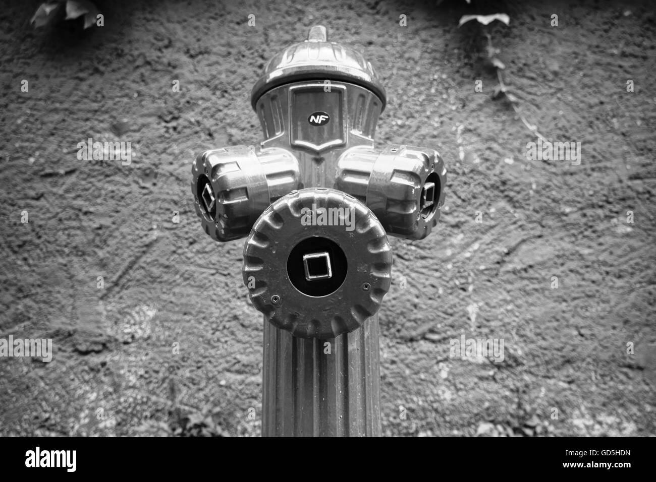 Fire hydrantrural, france, europe - Stock Image