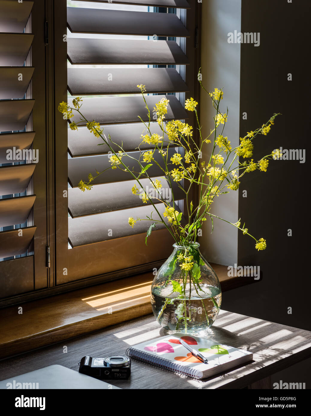 Detail of vase with sprigs of yellow flowers with plantation shutters in background - Stock Image