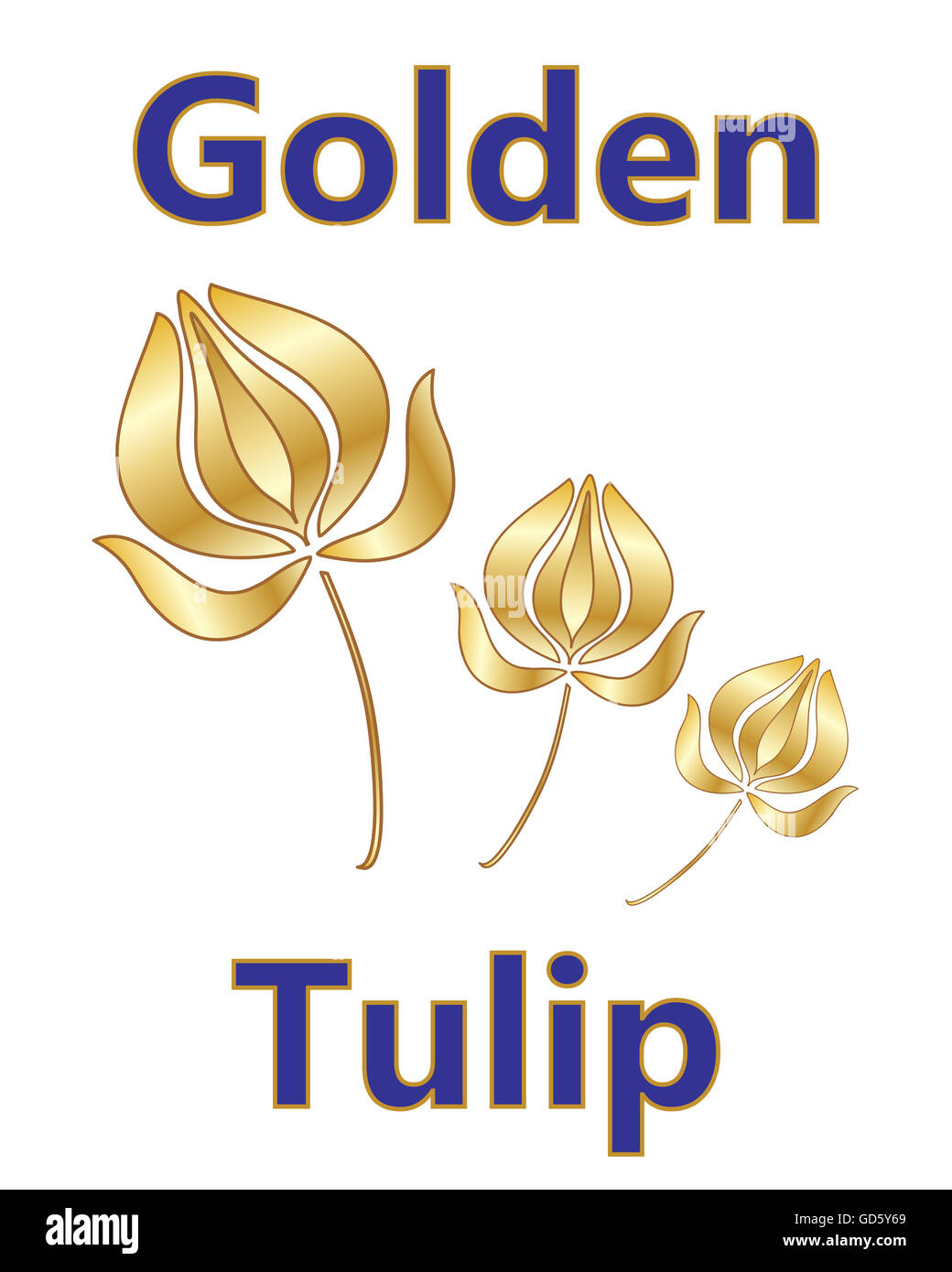 an illustration of a metallic golden tulip design with a stylized flower and blue and gold type on a white background - Stock Image