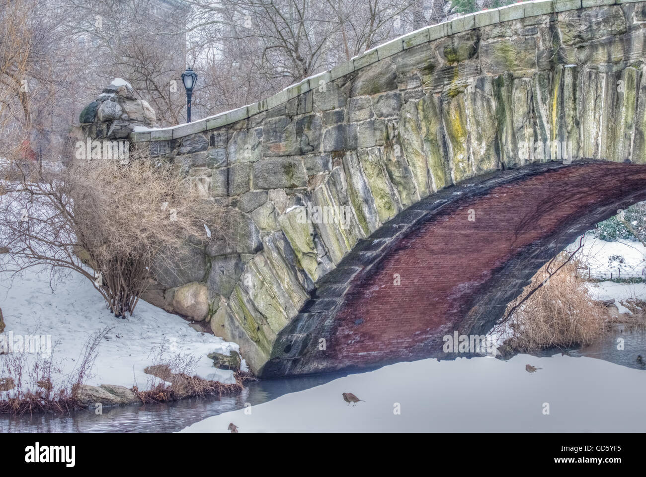 The Gapstow Bridge a gracefully curved stone bridge crossing the Pond,  Central Park, New York, NY - Stock Image