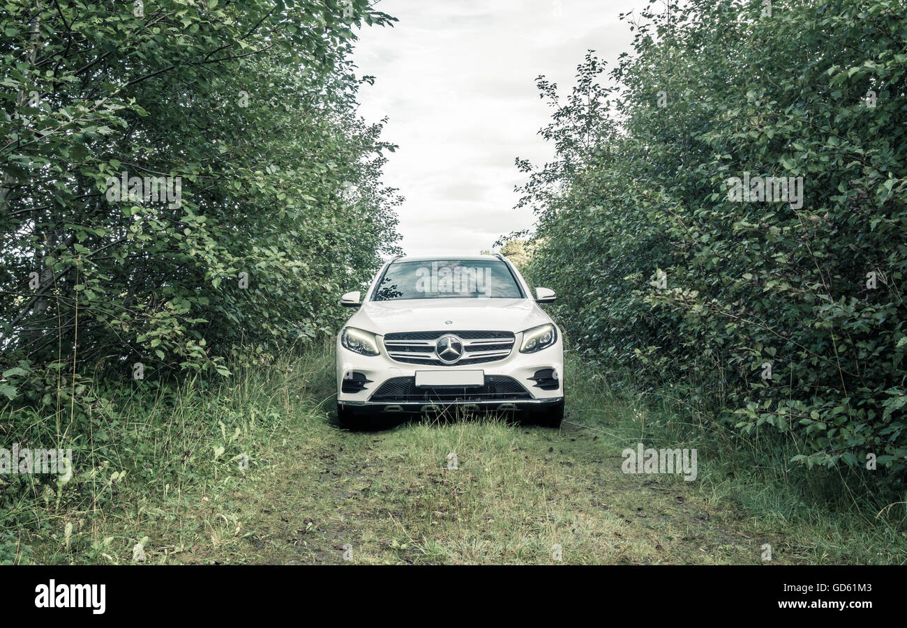 Mercedes GLC on a forest road. - Stock Image