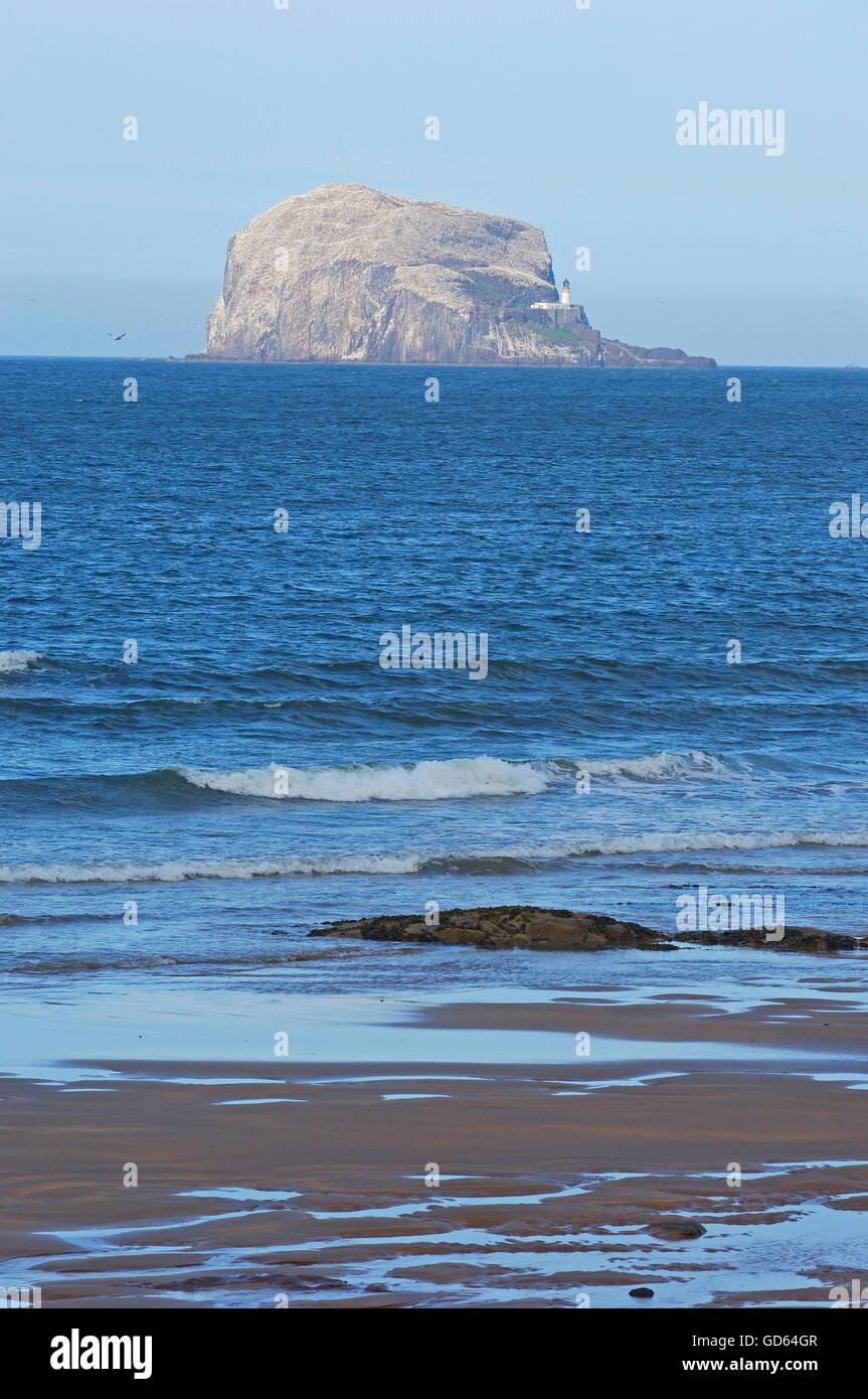 Bass Rock, from the North Berwick shore, East Lothian, Scotland, United Kingdom, Europe Stock Photo