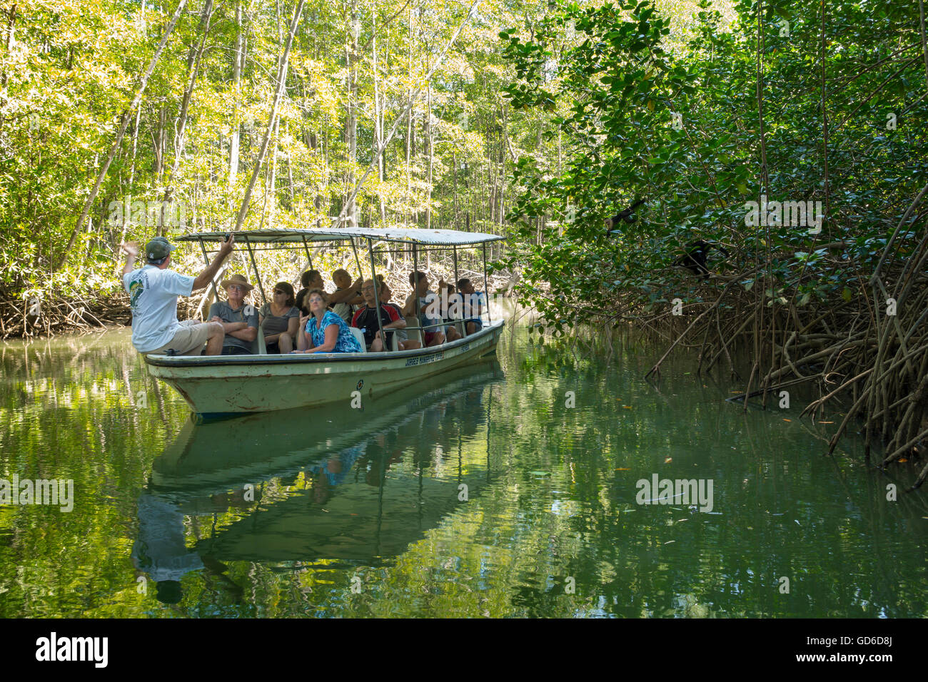 A mangrove tour boat full of tourists put on by the company Iguana Tours in Quepos, Costa Rica. - Stock Image