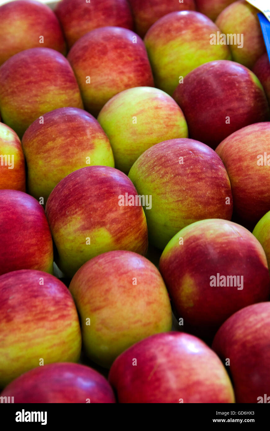 Close up of tray of Apples - Stock Image
