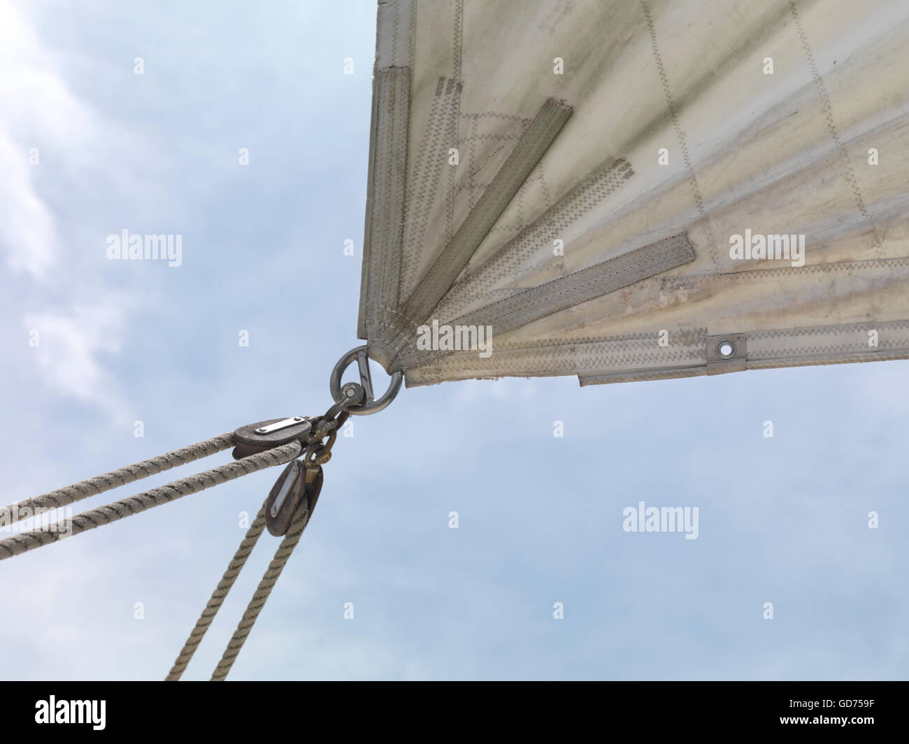 Corner of a sail clew with running rigging - Stock Image