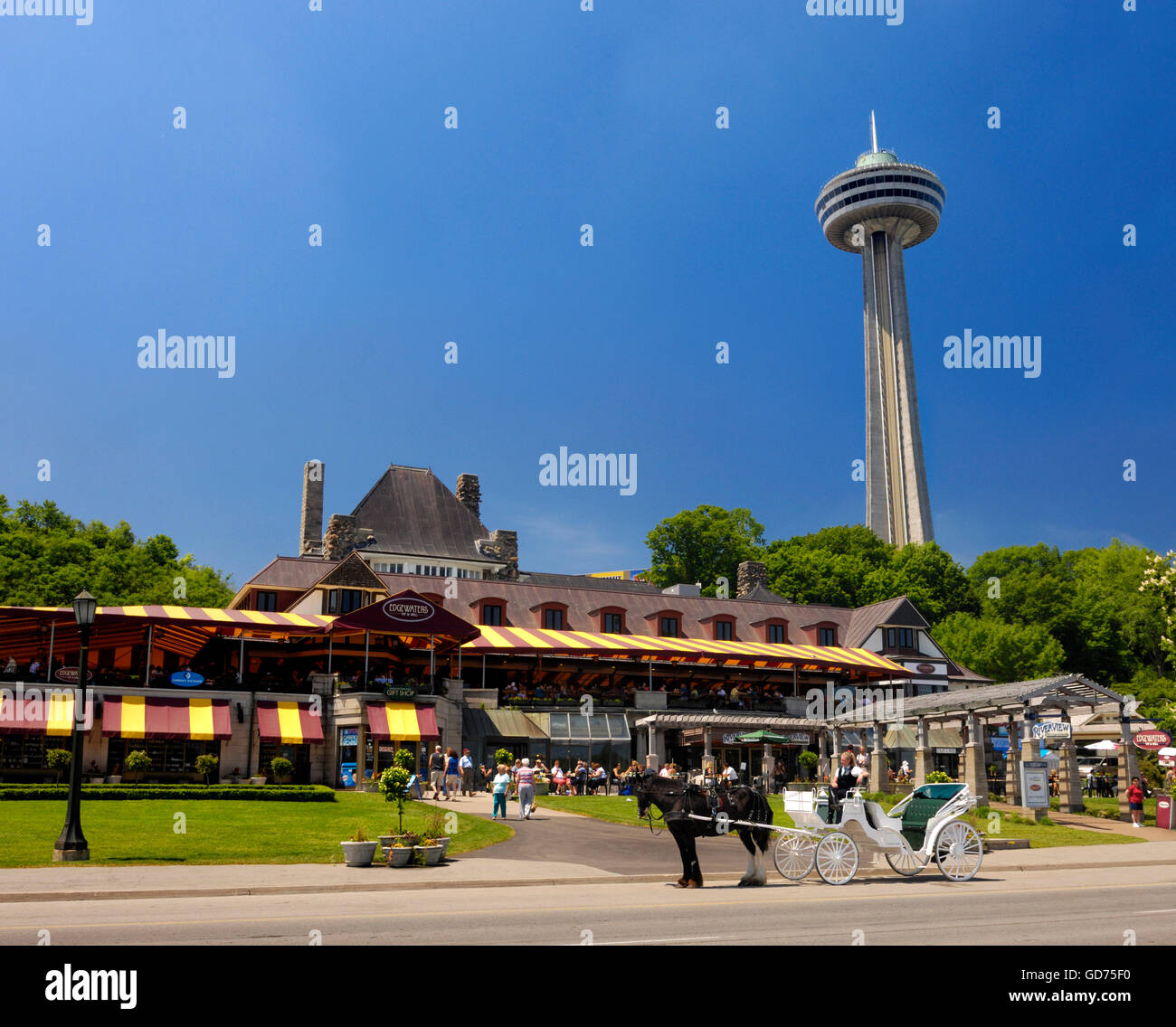 Niagara Falls City View On Skylon Tower And Edgewaters And