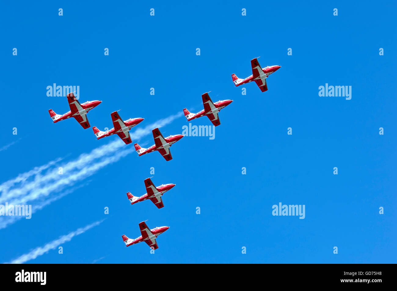The Canadian Forces Snowbirds aerobatic team, Canadian International Air Show, Toronto, Ontario, Canada - Stock Image