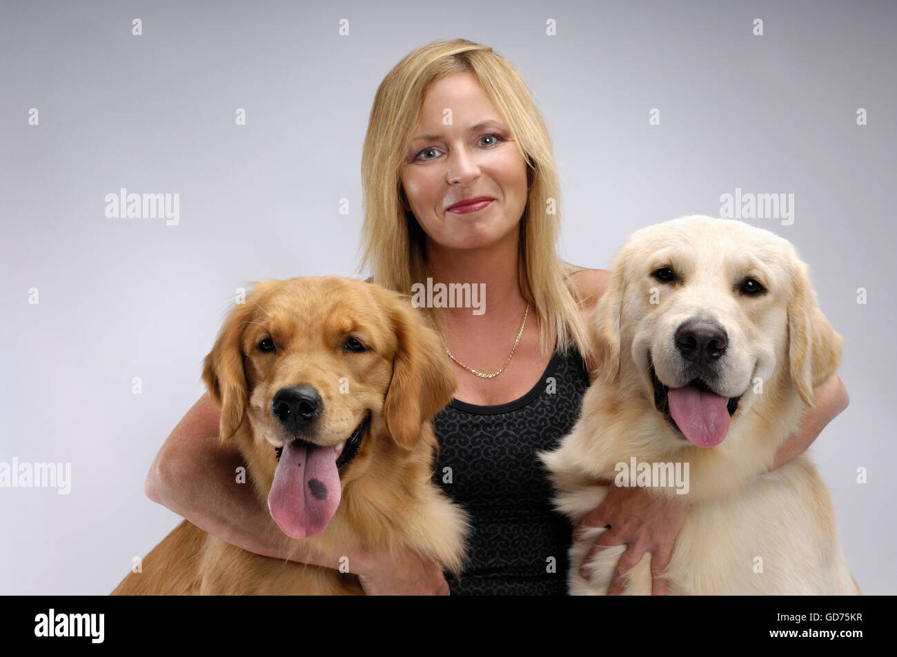 Woman hugging two one-year-old Golden Retrievers - Stock Image