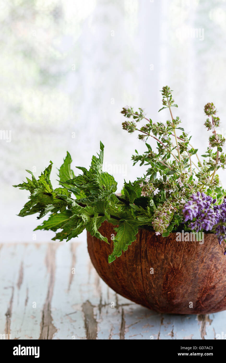 Bouquet of garden herbs - Stock Image